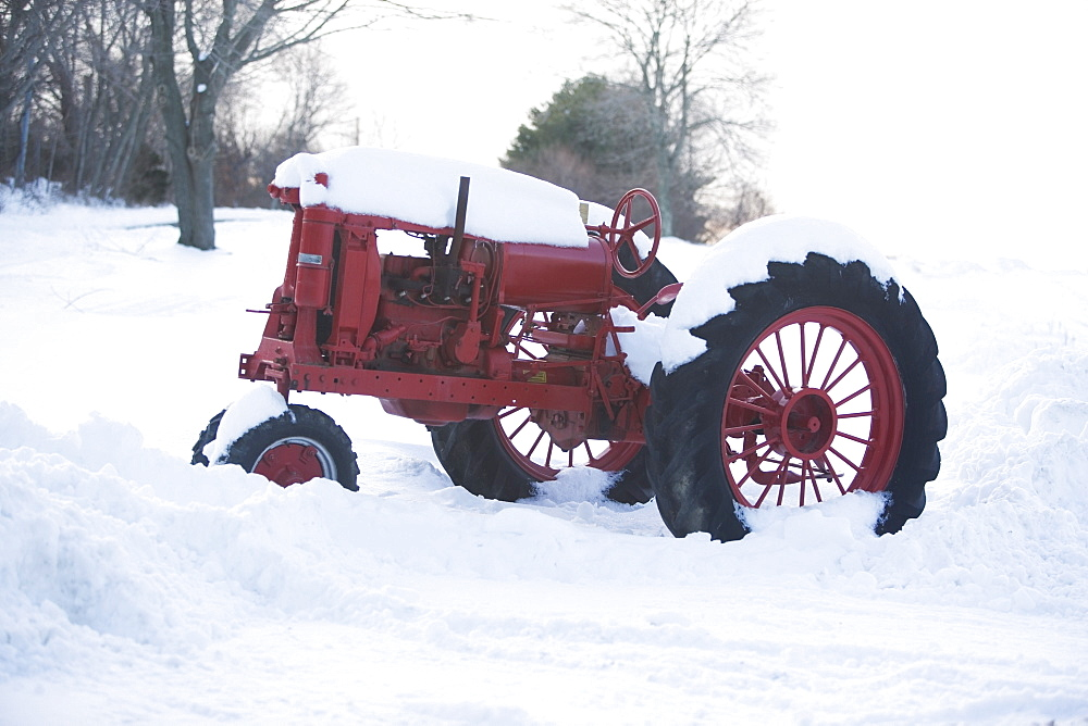 USA, New York, Cutchoge, old tractor covered in snow