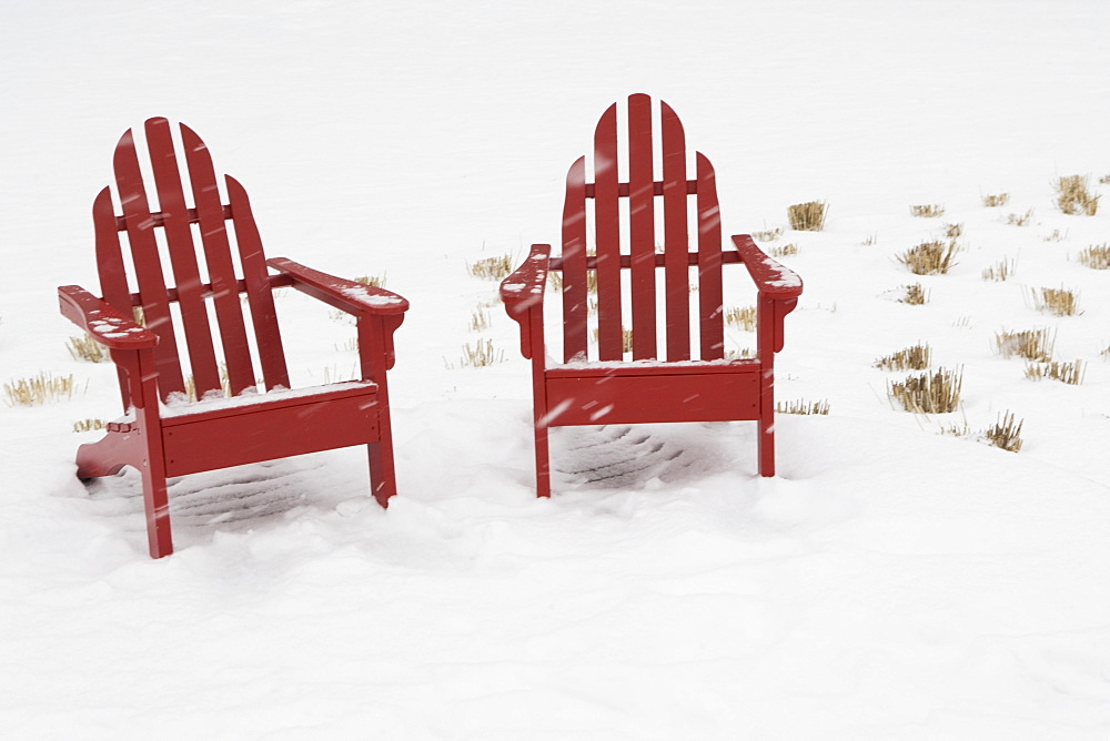 USA, New York City, two adirondack chairs in snow