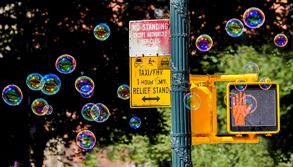 Road sign with soap bubbles, New York City, New York