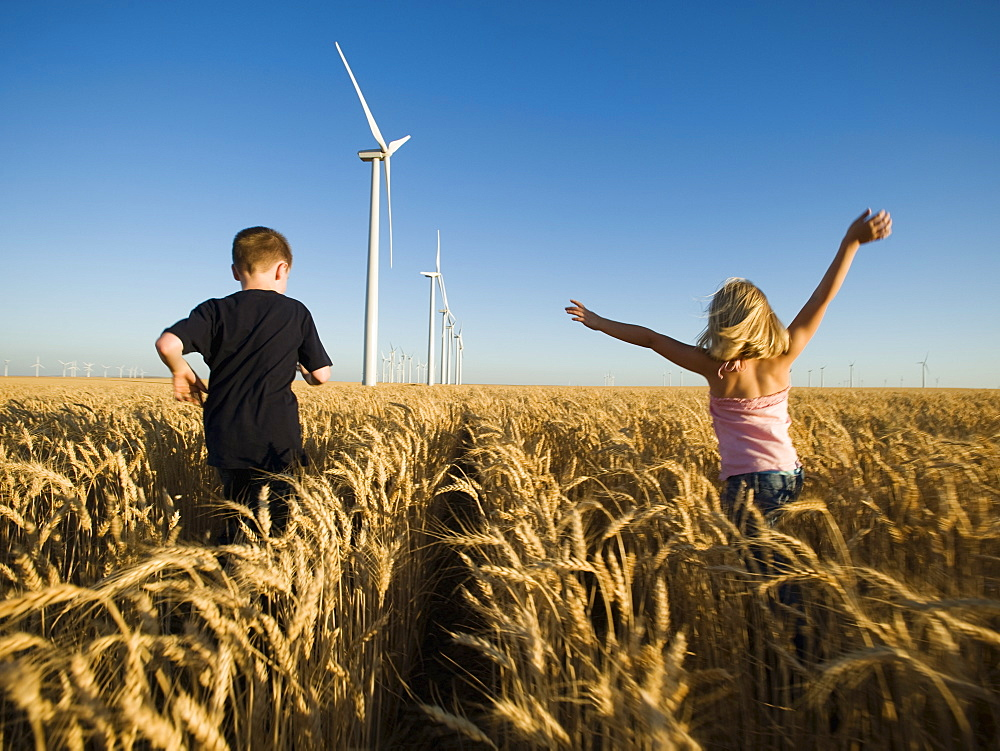 Children running through tall wheat field on wind farm