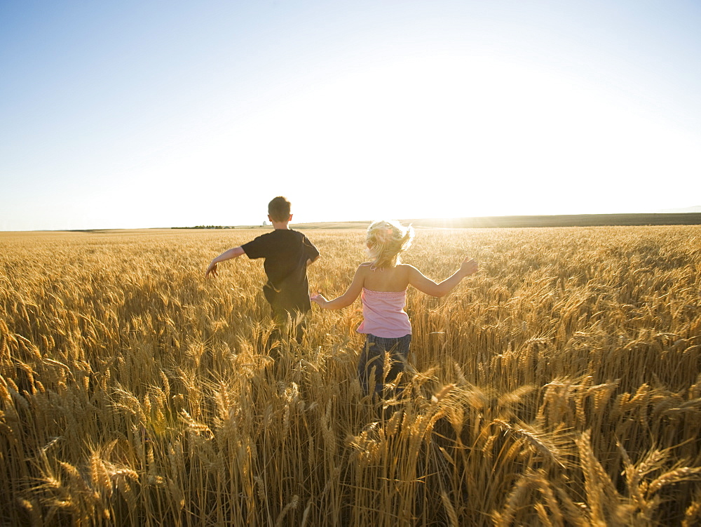 Children running through tall wheat field