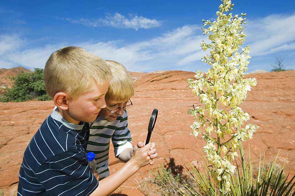 Two young boys at Red Rock
