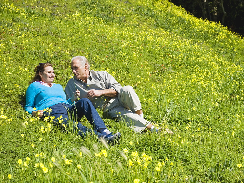 Couple relaxing in meadow