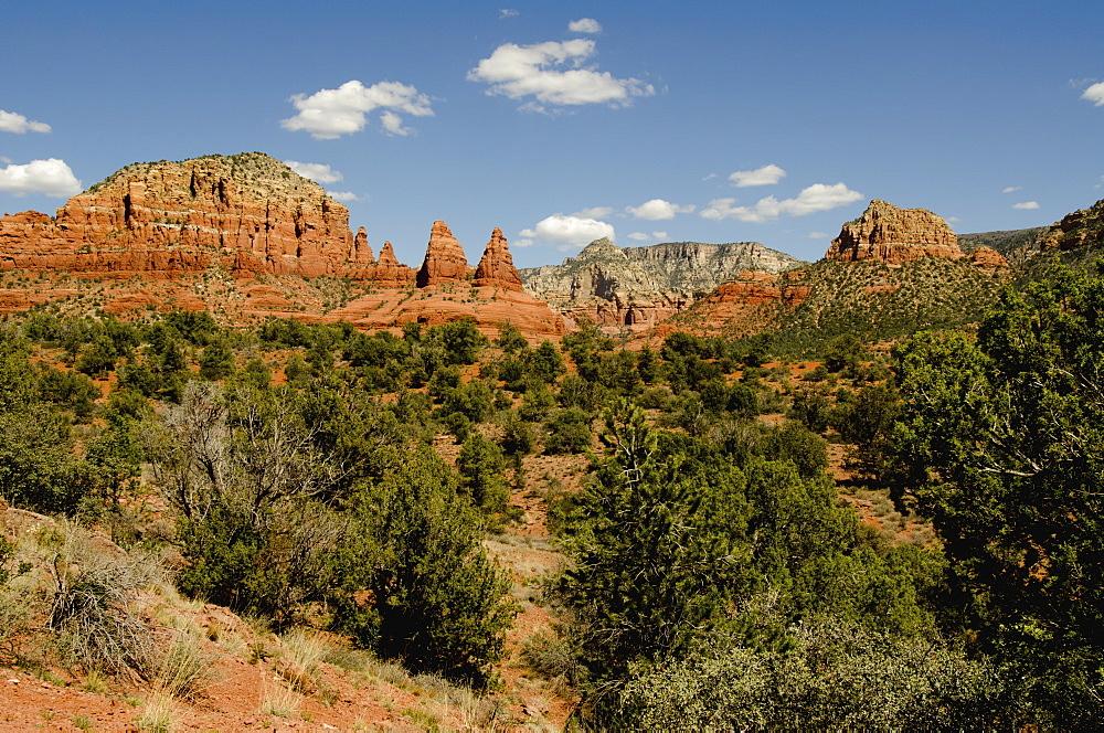 View of canyon, USA, Arizona, Sedona