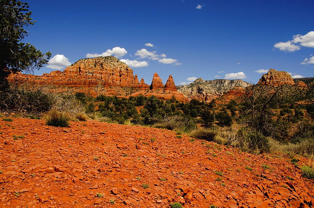 View of desert and red rocks, USA, Arizona, Sedona