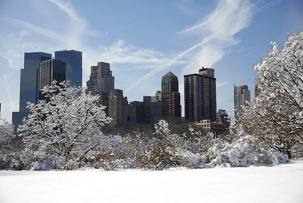 View of Central Park at winter, New York City