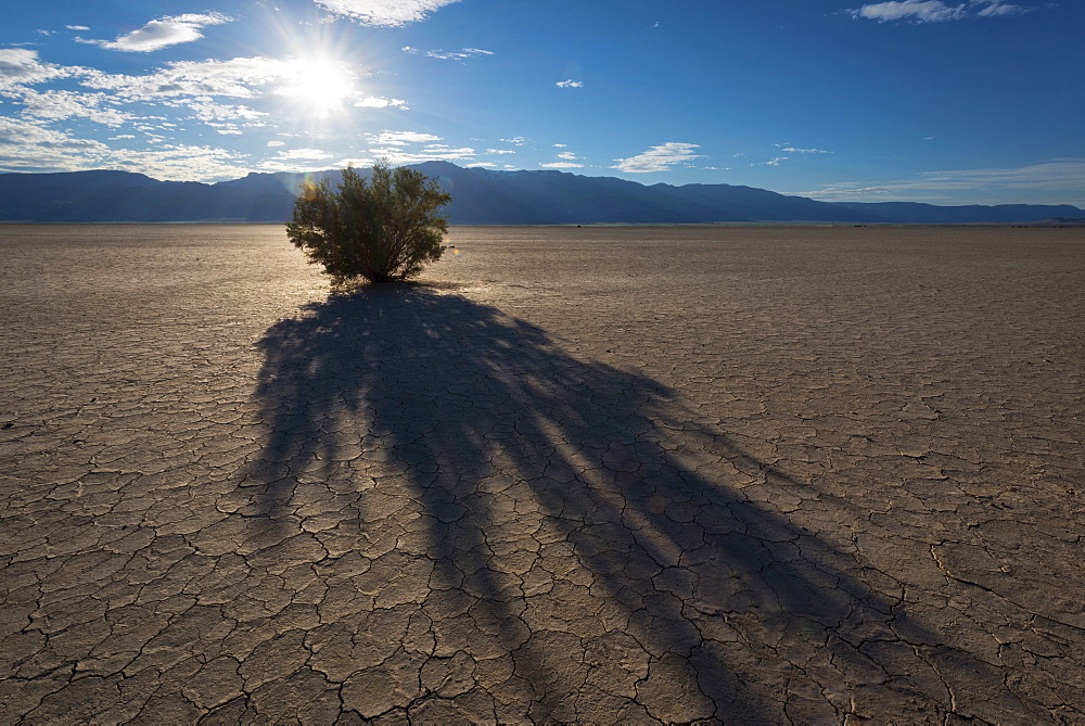 Alvord Desert at sunset, Harney County, Oregon