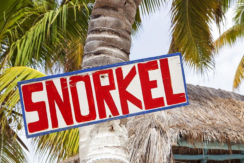Mexico, Quintana Roo, Yucatan Peninsula, Isla Mujeres, Sign hanging on palm tree, Mexico, Quintana Roo, Yucatan Peninsula, Isla Mujeres
