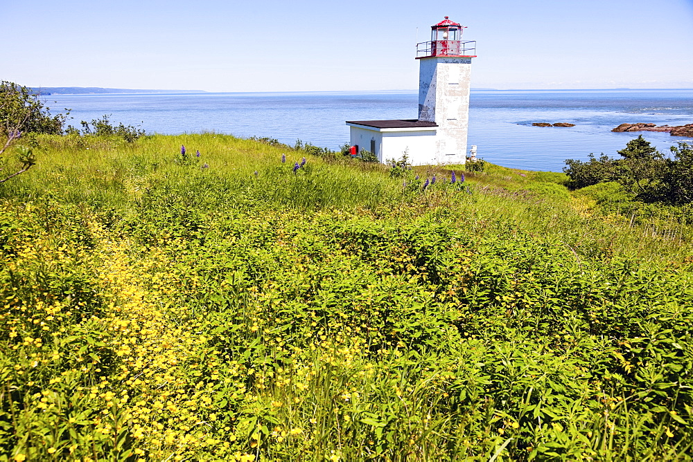 Quaco Head Lighthouse in meadow and horizon over sea, New Brunswick, Canada