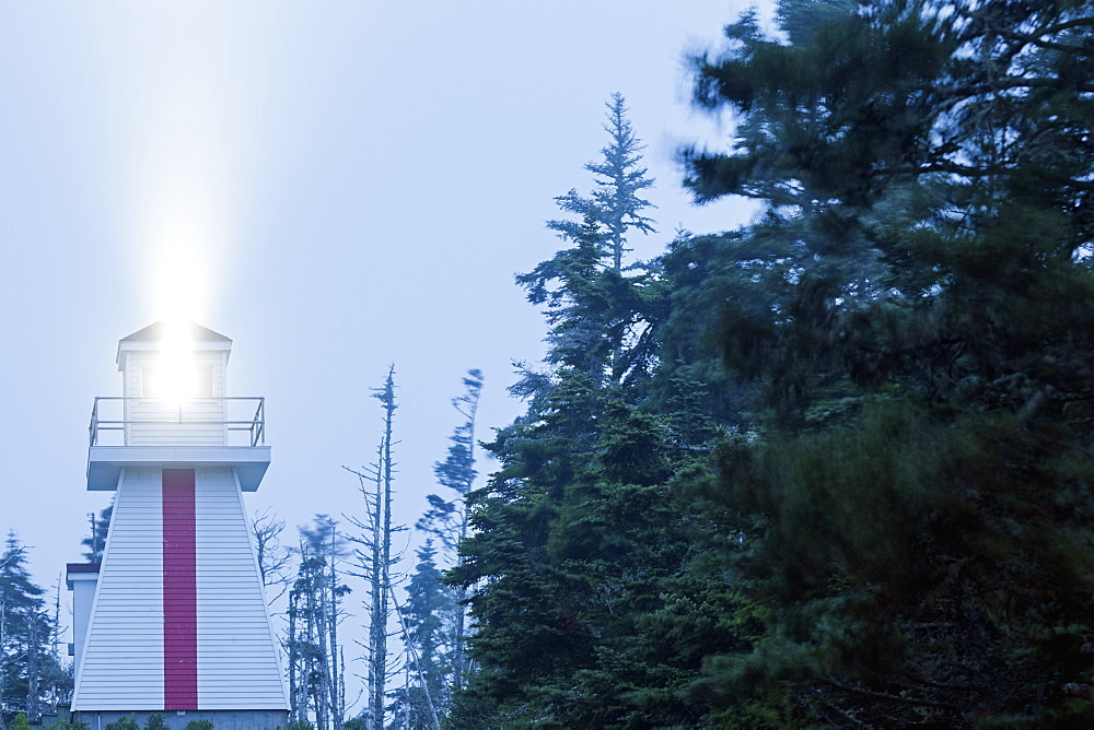Low angle view of lighthouse by forest, Nova Scotia, Canada