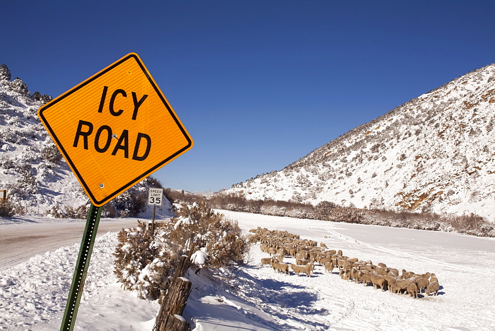 Road sign by snowcapped road in winter, Colorado