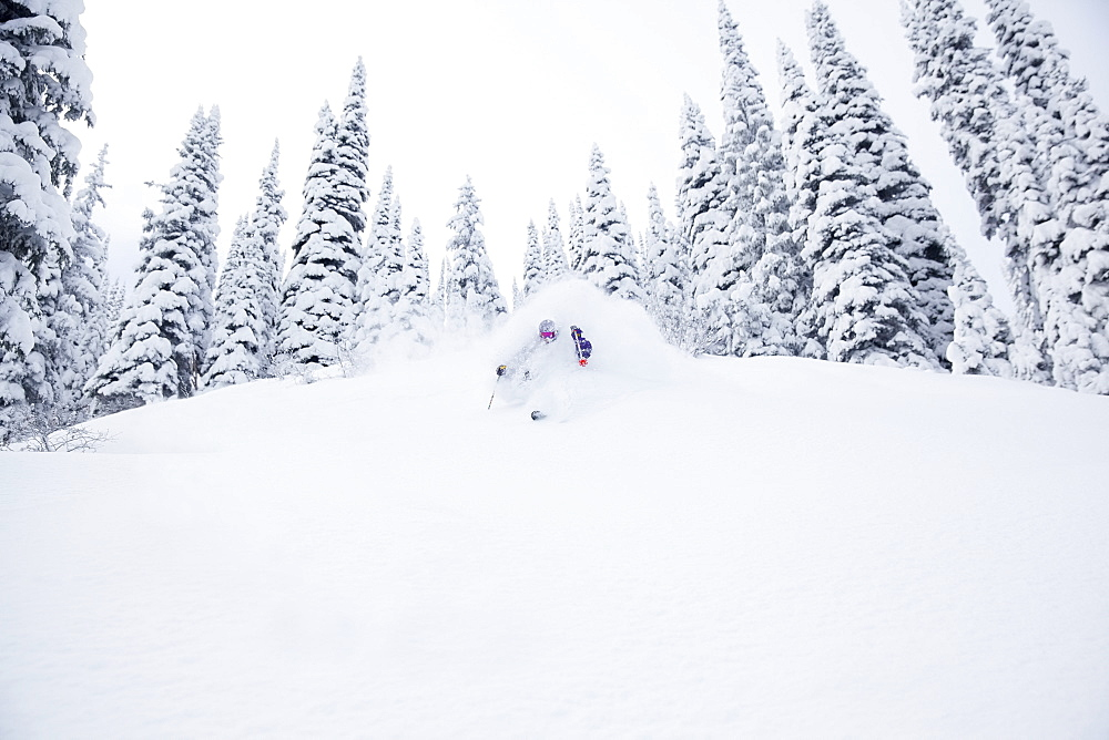 Young man skiing in forest, Whitefish, Montana, USA