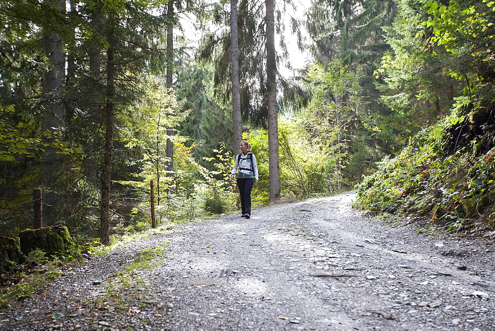 Woman hiking in forest, Austria, Salzburger Land, Maria Alm