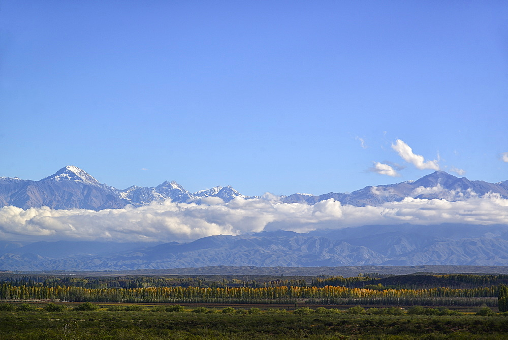 View of Andes Mountains across Uco Valley, Uco Valley, Mendoza, Argentina