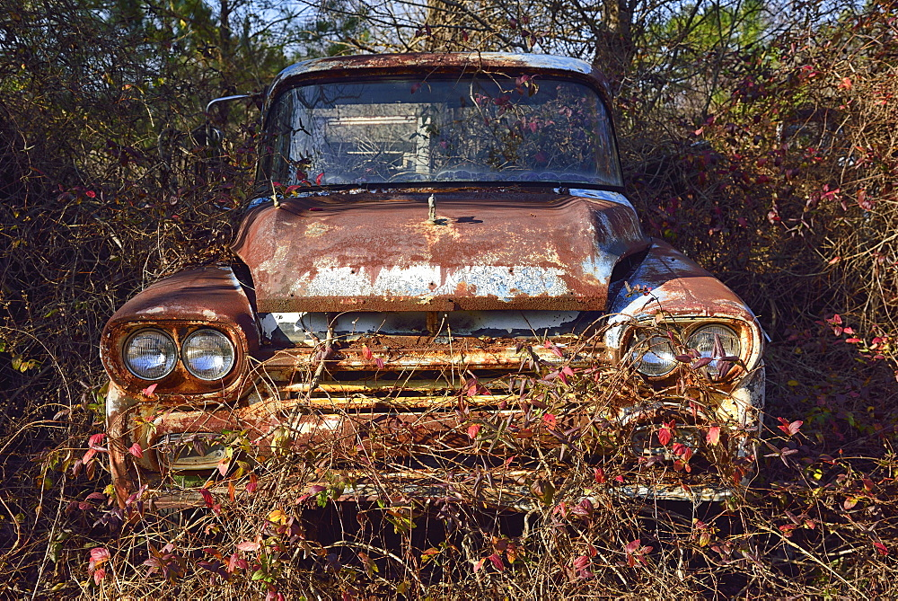 Abandoned rusty car in field, USA, Georgia