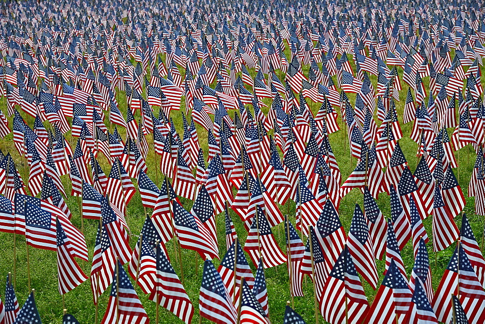 Massachusetts, Boston, American flags on Boston Common