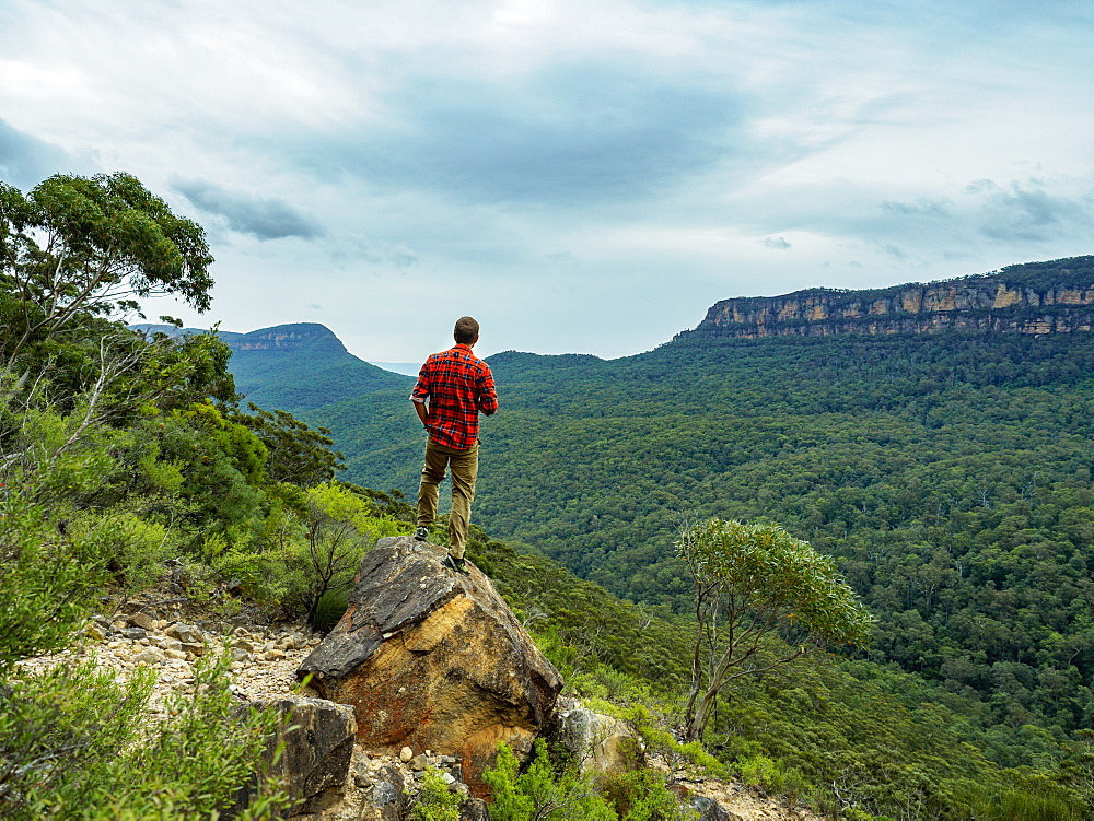 Australia, New South Wales, Katoomba, Blue Mountains, Rear view of mid adult man looking at Blue Mountains