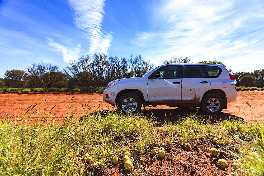 Australia, Outback, Northern Territory, Red Centre, West Macdonnel Ranges, SUV car in desert