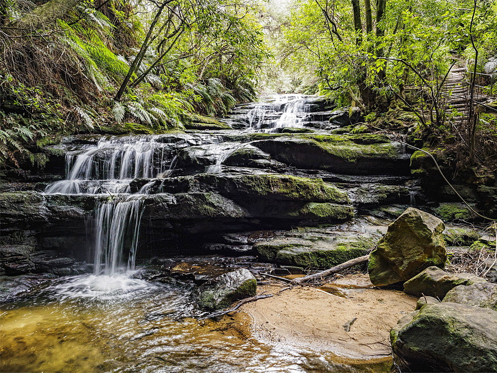 Australia, New South Wales, Blue Mountains National Park, Leura Cascades, Waterfall in forest