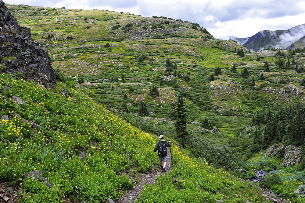 USA, Colorado, Man walking down mountains in San Juan National Forest