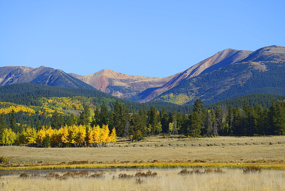 USA, Colorado, Kenosha Pass in fall