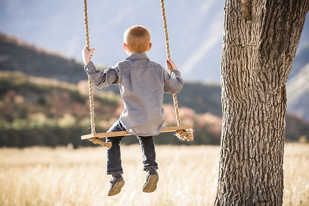 Boy (4-5) sitting on swing