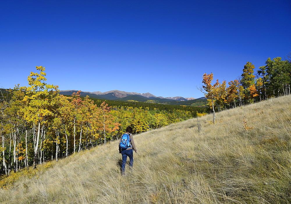 USA, Colorado, Hiker at Kenosha Pass