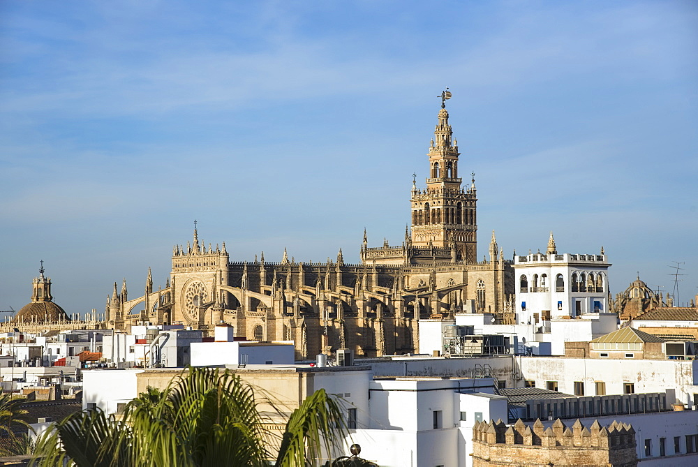 Spain, Andalusia, Seville, Cityscape with Giralda Tower and cathedral