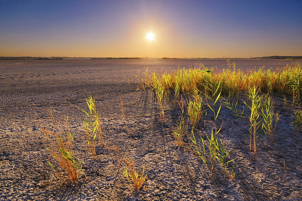 Ukraine, Dnepropetrovsk Region, Novomoskovskiy District, Lake Soleniy Lyman, Desert at sunset