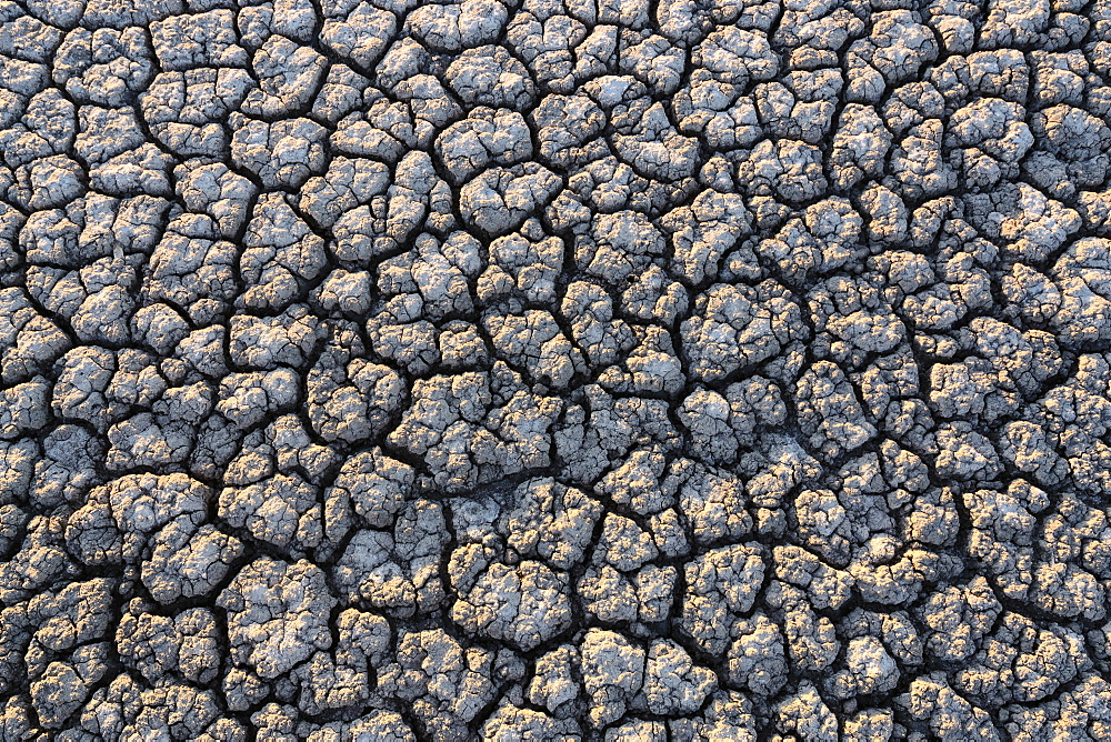 Overhead view of cracked desert