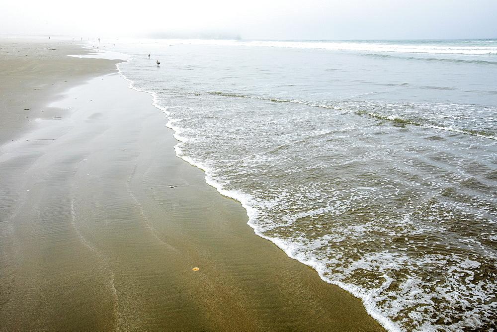 Beach in Morro Bay, California, USA