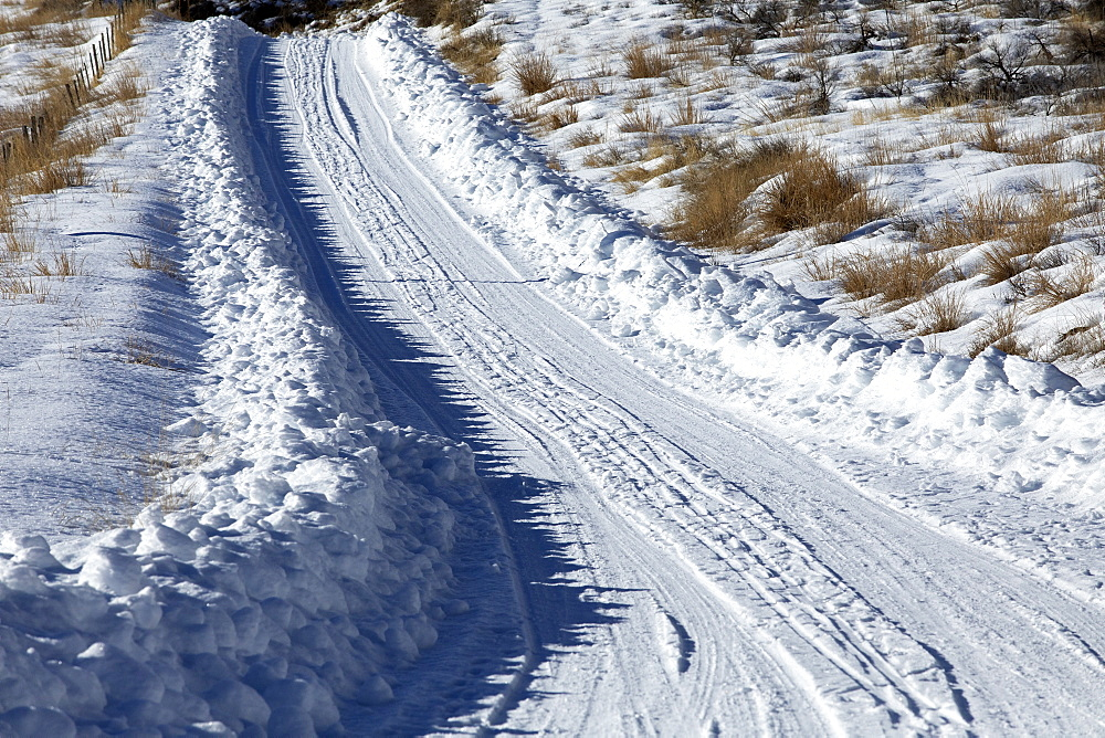Tire tracks through snow