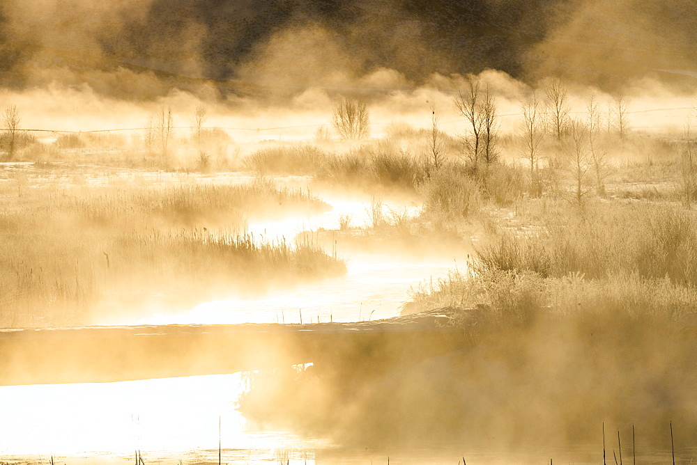 River at sunrise in Picabo, Idaho