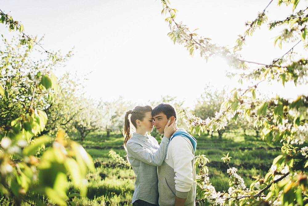 Young couple embracing by trees