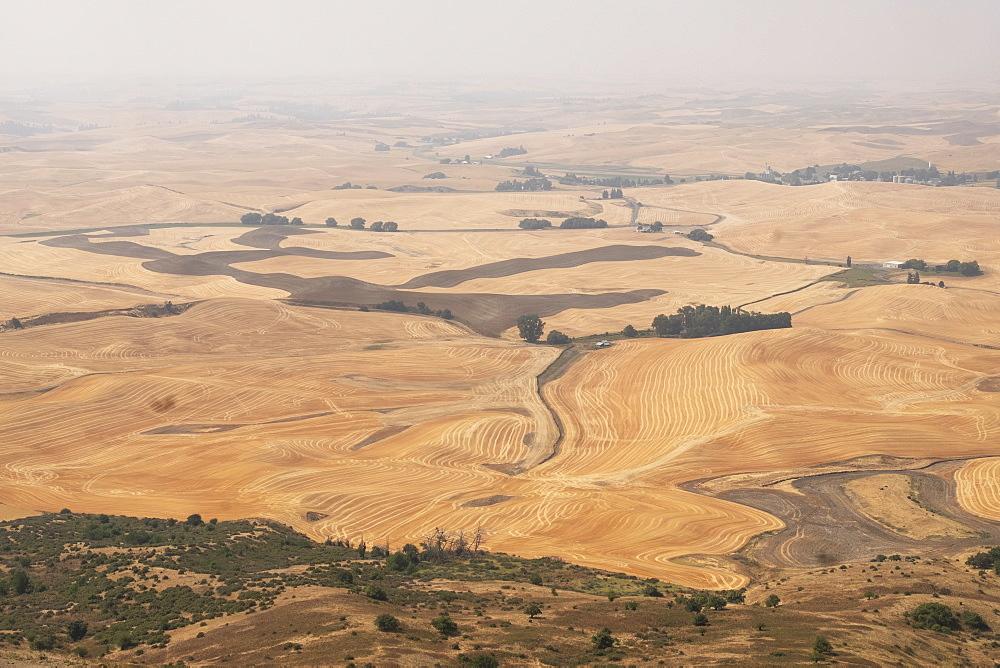 Rural landscape in Palouse, Washington, USA