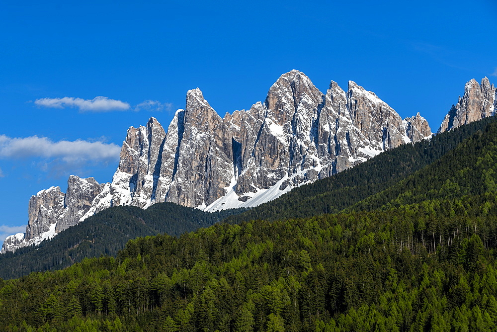 Forest by mountain peaks in Dolomites, St. Peter, South Tyrol, Italy