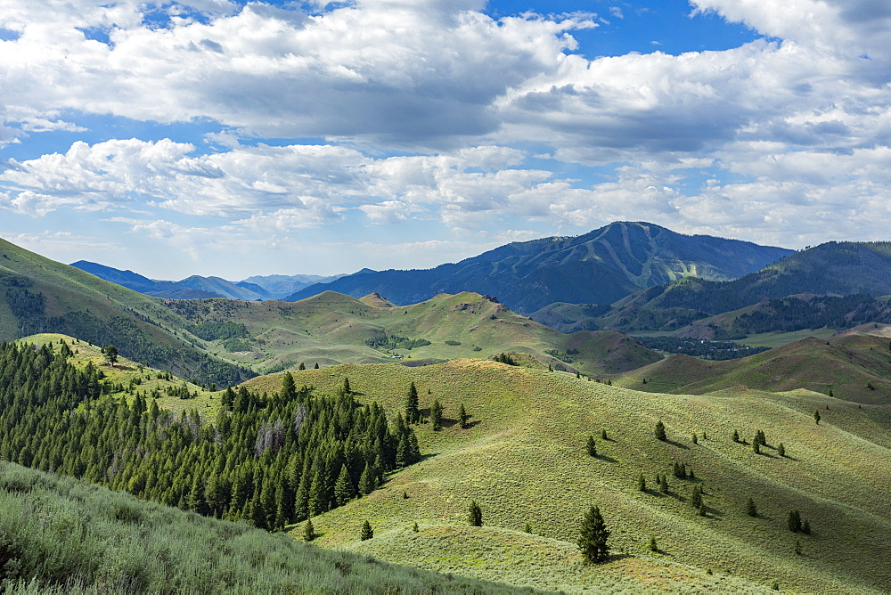 Green hills in Sun Valley, Idaho, USA