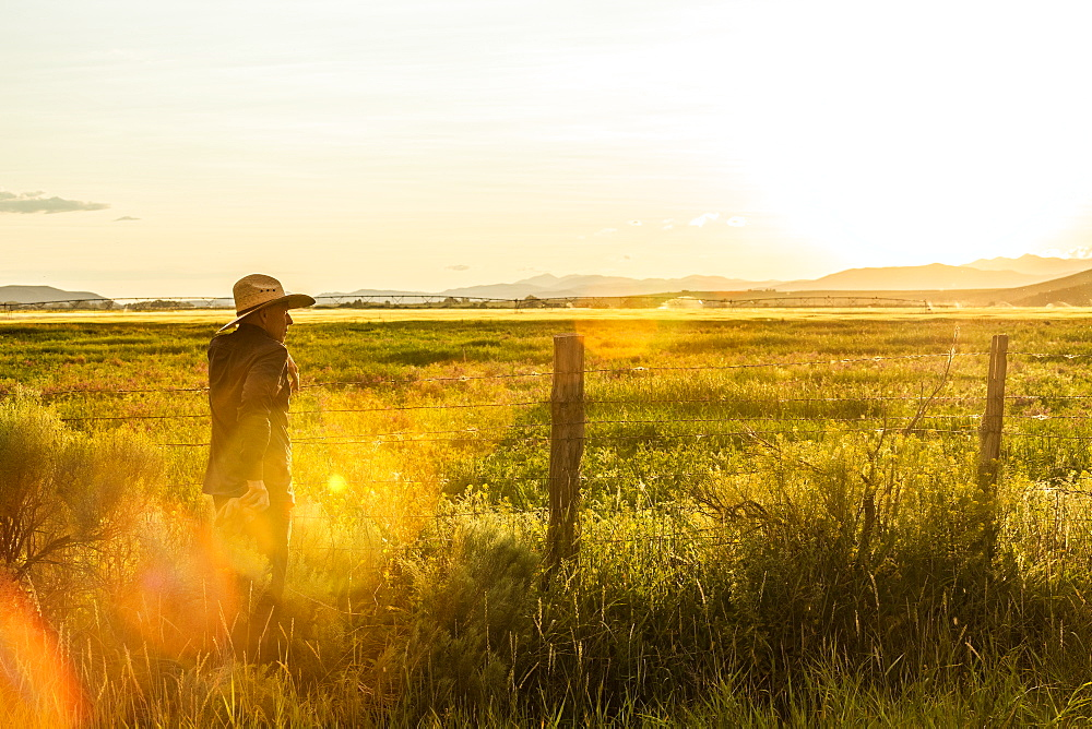 Farmer by fence at sunset in Picabo, Idaho, USA