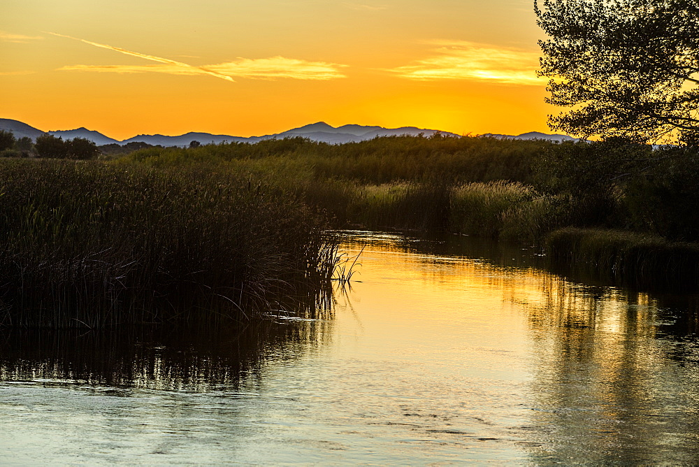River at sunset in Picabo, Idaho, USA - 1178-27909