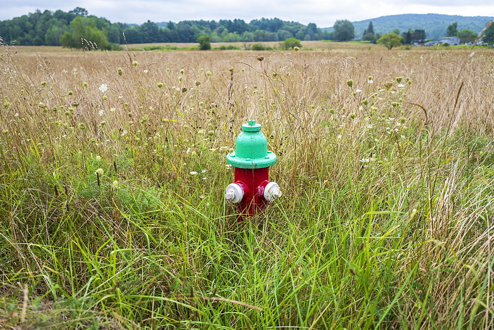 Fire hydrant in field in Dalton, Massachusetts, United States of America