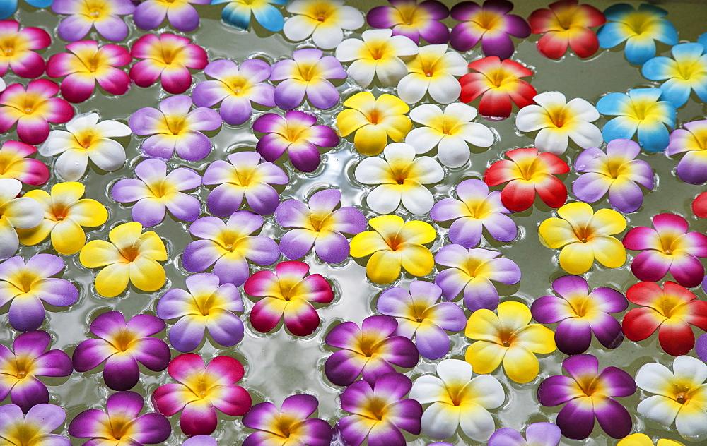 Flowers floating in wellness spa in Bangkok, Thailand