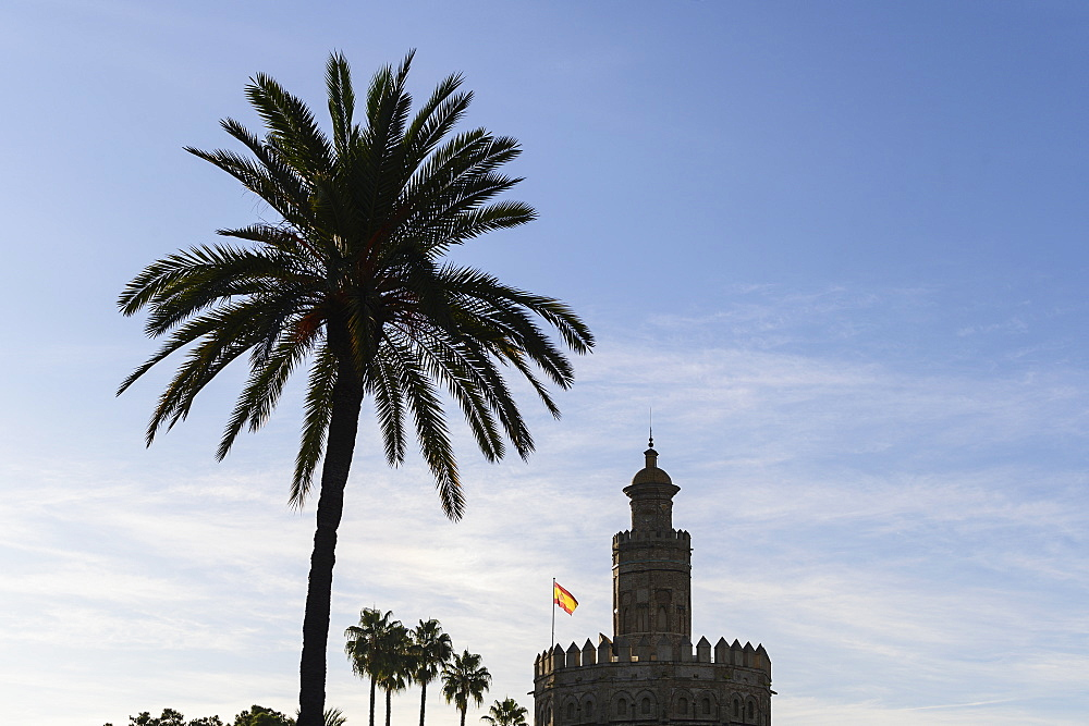 Silhouette of palm tree and Torre del Oro in Seville, Andalusia, Spain