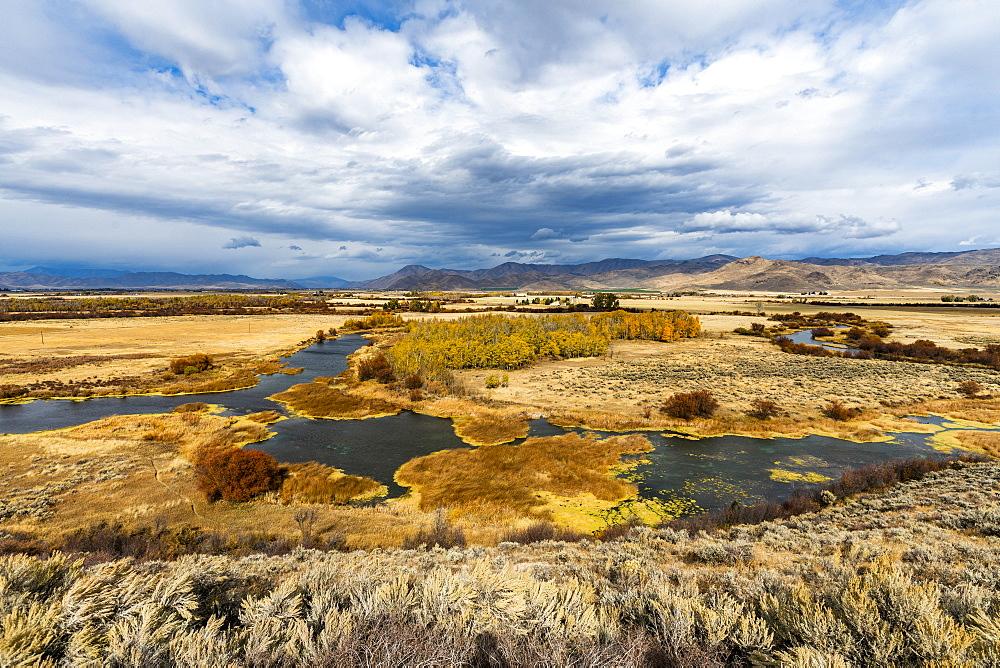 River in marsh