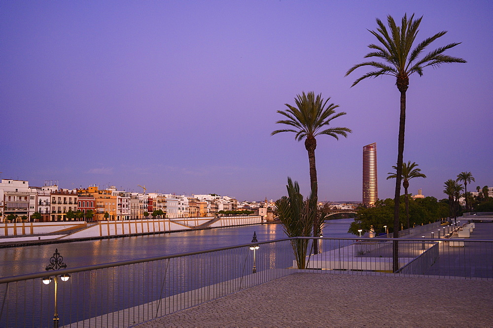 Palm trees in front of Sevilla Tower at sunset in Seville, Spain