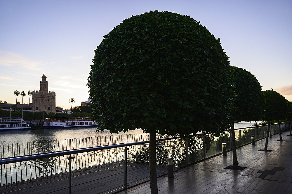 Trees on footpath with Torre del Oro in distance in Seville, Spain - 1178-28257