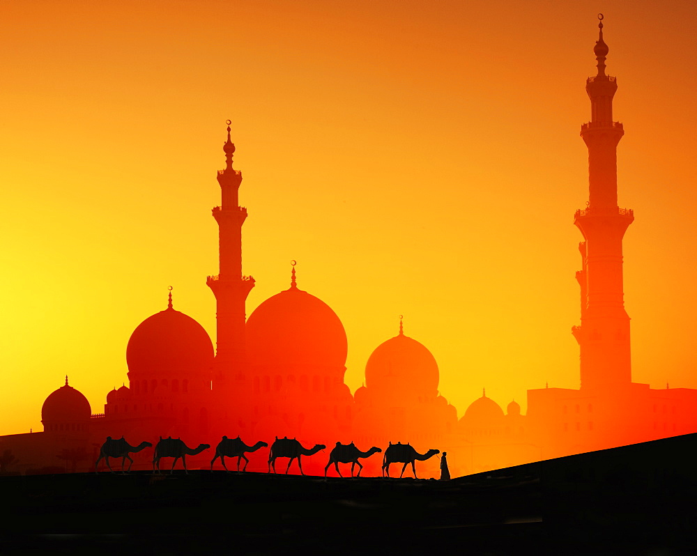 Man with camels in front of Sheikh Zayed Mosque at sunset in Abu Dhabi, United Arab Emirates