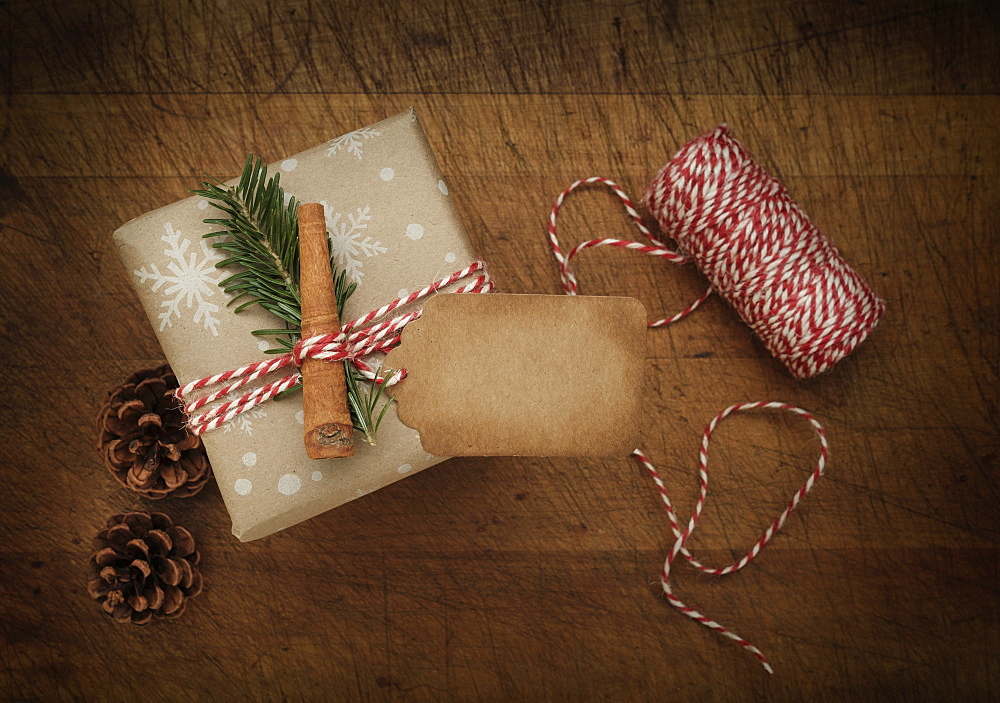 Carrot and pine frond tied to Christmas present