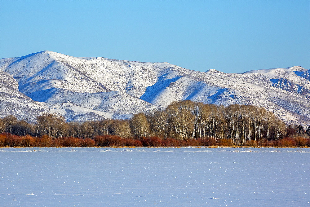 Snowy mountain in Picabo, Idaho