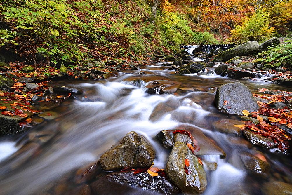 Ukraine, Zakarpattia region, Carpathians, Verkhniy Shypot waterfall, Blurred waterfall in autumn scenery