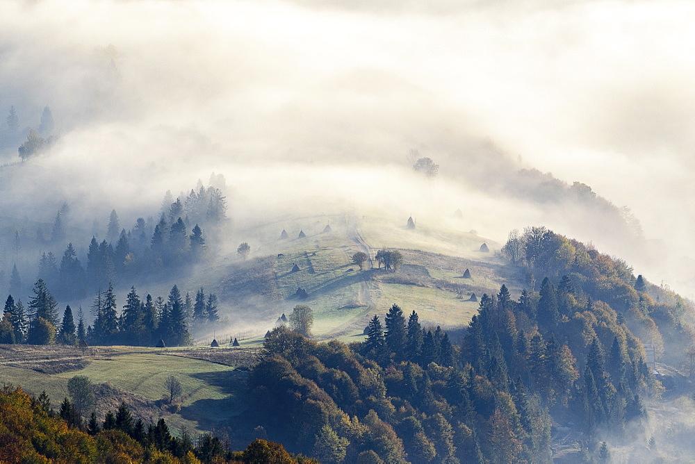 Ukraine, Zakarpattia region, Carpathians, Borzhava, Foggy hills ofCarpathian Mountainsat sunrise